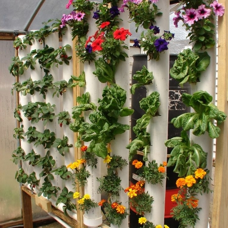 Vertical Gardening Plans and DVD
